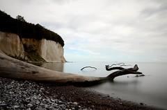 Rügen! (marcelschiller) Tags: balticsea ostsee water wasser steine stone stones klippe cliff tree baumstamm stamm