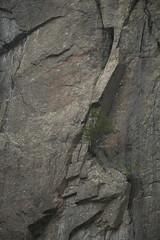 Avalanche Lake Hike (igniteskate) Tags: avalanche lake adirondacks ny new york