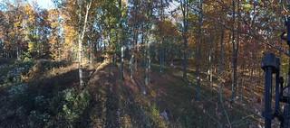 Kentucky Whitetail Hunt 5