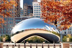 The Bean (adrienneluis) Tags: chicago illinois art architecture bean cloudgate milleniumpark