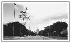Ipanema - Rio (o.dirce) Tags: avenida rua ipanema riodejaneiro odirce cidade maravilhosa rio cidadedorio