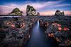 The Stars Emerge (Luke Austin) Tags: newzealand seascape starfish southisland