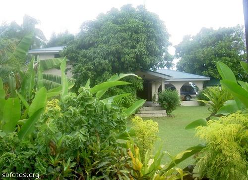 Paisagismo e jardinagem 18