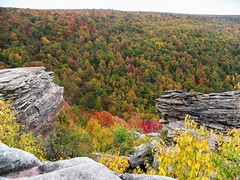 Lindy Point, Blackwater Falls State Park (Vivie327864) Tags: westvirginia appalachianmountains blackwaterfallsstatepark lindypoint