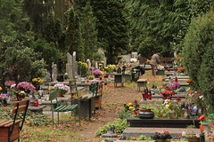 Grabiszyski cemetery , Wrocaw 27.10.2013 (szogun000) Tags: autumn trees fall cemetery graveyard canon poland polska graves tombs cmentarz wrocaw lowersilesia groby dolnolskie dolnylsk cmentarzgrabiszyski canoneos550d canonefs18135mmf3556is