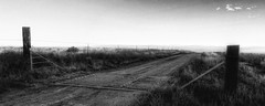 Cattle Guard Sunrise (Flickr Goot) Tags: morning november blackandwhite bw white black canon point colorado shoot cattle guard 330 co pointandshoot hs elph 2013