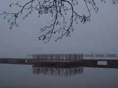 Boat Bridges (Axiraa) Tags: bridge autumn lake tree water fog dark lago see meer estonia foggy estland viro estonie   saadjrv tartumaa o ksi