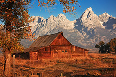 Moulton Barn (ScenicScapes) Tags: autumn autumnfoliage mountain mountains beautiful beauty landscape landscapes nationalpark hole landmark jackson wyoming grandtetons tetons moutains grandteton breathtaking jacksonhole cartwright mountainrange grandtetonsnationalpark mountainpeak antelopeflats moultonbarn photoscenics terrycartwright