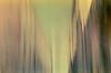я п а д а ю т ы п а д а е ш ь м ы п а д а е м (neamoscou) Tags: art film analog flickr pentax grain inspired slide slidefilm retro indie nophotoshop zenitar analogphotography alternative facebook nopostproduction noediting diafilm diapo τέχνη 写真 alternativephotography filmphotography عکاسی هنر inconnu taide 藝術 فن 影相 russianlens 芸術 slowfilm 예술 古着 ศิลปะ independentphotography tumblr छायाचित्र कला 사진술 lowspeedfilm ফটোগ্রাফি صوير শিল্প การถ่ายภาพ ஒளிப்படவியல் ხელოვნება sergeyneamoscou heisnotcomingbackgetoverit ਕਲਾ