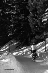 rider (stefano magon) Tags: winter mountain snow bike nikon neve inverno montagna d90 2013