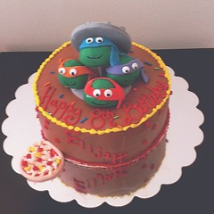 Teenage Mutant Ninja Turtles Cake, Pittsburgh, PA, www.birthdaycakes4free.com