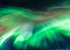 Icelandic Aurora from below (1/3) (TheAstroShake) Tags: iceland aurora northernlights auroraborealis astrometrydotnet:status=failed astrometrydotnet:id=nova231535