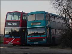 Ward's (X651 LLX) / (M923 PKN) (Colin H,) Tags: bus london volvo president depot northern essex wards counties olympian metroline ibp llx plaxton pkn b7tl ncme m923 ipswichbuspage colinhumphrey m923pkn x651 x651llx