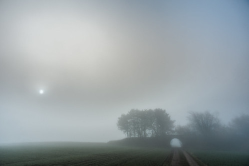 Fog Shine (71183143@N05), photography tags:  road bridge trees sun mist david sol field sunshine fog denmark nebel mark sony træer