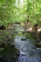 "Broomall's Run • <a style=""font-size:0.8em;"" href=""http://www.flickr.com/photos/92887964@N02/14222029954/"" target=""_blank"">View on Flickr</a>"