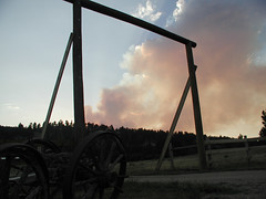 Grizzly Gulch Fire 2002 (twm1340) Tags: 2002 southdakota forest fire sd lead deadwood grizzlygulch
