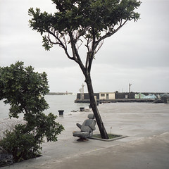 iSeat (Tom Kondrat) Tags: taiwan analogue film mamiya6 mediumformat 120 6x6 kodakportra160 before typhoon typhoonblues tomkondrat calmbeforethestorm seat robot tree harbour sea malakas