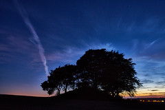 Silouhette in the blue hour [Explored 161016] (Budoka Photography) Tags: sky bluehour bluesky twilight dawn sunset tree clouds cloud night manualfocus canonfd20f28 wideangle longexposure landscape nature rnneberga sweden sonyalphailce7rm2 silouhette