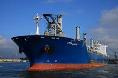 Star Laguna DST_0258 (larry_antwerp) Tags: griegstar starlaguna nhs antwerp antwerpen       port        belgium belgi          schip ship vessel        9593854