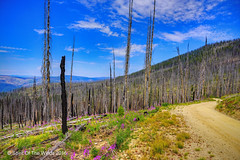 The Magrider Corridor (jimgspokane) Tags: mountains idahostate hemagrudercorridor camping nikonflickraward