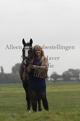15 oktober 2016-59-2 (MZorro4) Tags: mariekehaverfotografie oudesluis schagen paardenfotografie portretfotos rijden wwwmariekehaverfotografienlpaarden