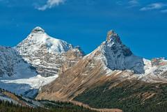 Canadian Peaks (Philip Kuntz) Tags: mountathabasca hildapeak athabascaglacier canadianrockies icefieldsparkway peaks mountains banff jasper alberta canada