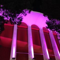Extraordinary Lighting// The Forum (makaylarichardson) Tags: lights building contrast framing bright neon lighting pink theforum
