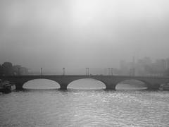 Paris - Places 4 (_ Adle _) Tags: paris fleuve seine pont brume gris nb noiretblanc monochrome