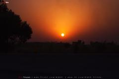 Colors of Dusk (AQAS.Clicks) Tags: landscape pakistan nature tracking nathiagali murree miranjani mushkpuri forest dusk sunlight ngc