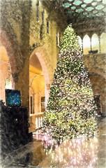 decorations (ams photos) Tags: christmas decorations lights christmastree christmasdecorations