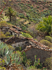 PB062319 e1 MF fr (David Geddes1) Tags: terraced mountainside jerjune farmhouses cacti palmtrees gomera