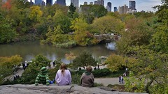 norland cruz photography: three kids on a rock got the best seat in the house in central park (16x9 widescreen copy) (norlandcruz74) Tags: safari mozilla chrome google yahoo firefox bing twitter tweeter pinterest flickr framing composition people pov vista pointofview perspective viewpoint kids thebestseatinthehouse norland cruz pinoy filam filipino nikon d5100 dx manhattan ny nyc new york city america usa central park october 2016 cityscape gapstow bridge