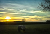 Cheshire Sunset (jamesromanl17) Tags: field sky landscape sunset sun clouds cloudscape cloudy england landscapes fields sundown cloud skies farming cheshire x28 travel