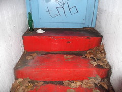 10th November 2016 (themostinept) Tags: westonrise red blue white bottle tissue leaves steps stairs door doorway london camden kingscross wc1 scrawl graffiti