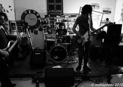 P1000577 (mtmsphoto) Tags: lightroom jfflickr lumix humus avola livemusic borghesi