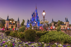 The Magic Kingdom (Carlos A. Barrientos) Tags: dios diosmiartistafavorito orlando florida magia castle flowers ligth colors landscape photography photooftheday disney disneyland themagickingdom natgeo yourshot cloudscape clouds christmas sunset travel mickey walking nigth