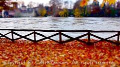 Torino (47) (cattazen.com) Tags: alluvione torino po esondazione parcodelvalentino murazzi pienadelpo cittditorino turin piemonte