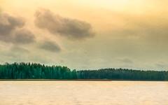 Camouflaged (Peter Vestin) Tags: nikondf samyangmf13520edumc siruin3204x siruik30x adobecreativecloudphotography topazlabscompletecollection herrn skattkrr karlstad vrmland sweden nature landscape seascape sunset vnern