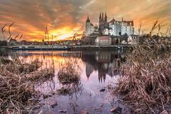Sunset in Meißen (Bilderweise Hobbyfotografie) Tags: sunset sonnenuntergang meisen meissen sachsen saxony germany licht stimmung light elbe spiegelung reflection albrechtsburg