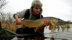 Ryan Jacobsen 11. december 2016 (gsf fishing) Tags: grndstedengsø geddefiskeri pikefishing gedde pike