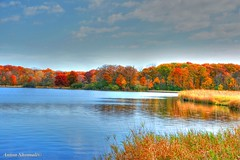 Fall colors and reflections (Anton Shomali - Thank you for over 800K views) Tags: fall colors reflections autumn color yellow green blue water lake river gold sun cloud clouds branch tree trees season mild cold warm