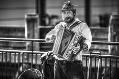 Piano Accordion Player (Edward Lyons) Tags: streetphotography pianoaccordion busker sydney circularquay blackandwhite canon5dmkiii canon musician