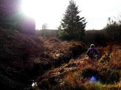 (charlestindall) Tags: walking hiking countryside england yorkshire moore fern winter mother morning cold united kingdom river east coast outdoor