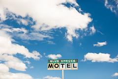 Blue Spruce Motel (Thomas Hawk) Tags: bluespruce bluesprucelodge bluesprucemotel gallup newmexico route66 rte66 usa unitedstates unitedstatesofamerica motel neon fav10 fav25 fav50