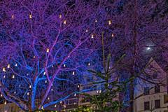 Blue Christmas (Renate Bomm) Tags: ef24105mmf4l canoneos6d weihnachtsmarkt christmas market cologne kln baum lights bluechristmas struktur renatebomm 2016 366 altermarkt flickrunitedaward blue blau tree city
