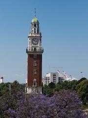 Torre de los ingleses (Letua) Tags: torredelosingleses plazasanmartin retiro torre reloj cielo urbano paisaje urban landscape buenosaires argentina jacaranda flor arbol