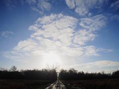 Tree of clouds (michaelmueller410) Tags: wolken clouds moor trees weg way blau weis wconp01 olympusepl5