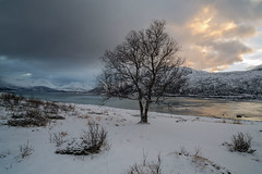 Arctic Sunset Norway (peterspencer49) Tags: peterspencer peterspencer49 norway winter winterview sunset tromso arcticcircle arctic