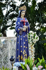 Our Lady of Hope (Pontmain) (Fritz, MD) Tags: intramurosgrandmarianprocession2016 igmp2016 igmp intramuros intramurosmanila manila marianprocession grandmarianprocession marianevents cityofmanila procession prusisyon intramurosgrandmarianprocession ourladyofhope ourladyofpontmain