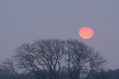 Life giving Sun or the Death Star? (Clint__Budd) Tags: sun sunrise deathstar